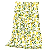 Lemon Fruit Florals Throw Blankets Printed Fleece Blanket for Bed Sofa Couch Office Travel for Adults Kids 60'x50'