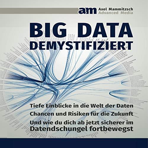 Big Data demystifiziert Titelbild