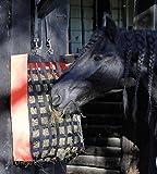 Reitsport Amesbichler Harry`s Horse Heusack Heutasche Heunetz ORANGE Futtertasche Futtersack Heubeutel mit vielen Freßöffnungen, Starke Ausführung groß Breite: 52 cm, Höhe: 70 cm, Tiefe: 17 cm