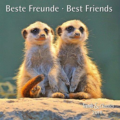 Beste Freunde Best Friends 2018 - Broschürenkalender - Wandkalender - mit herausnehmbarem Poster - Format 30 x 30 cm
