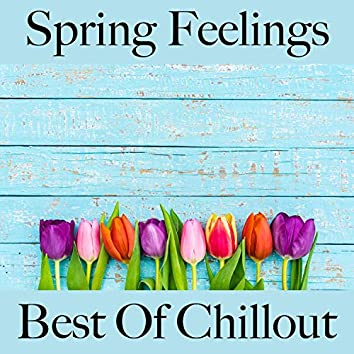 Spring Feelings: Best of Chillout