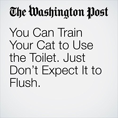 You Can Train Your Cat to Use the Toilet. Just Don't Expect It to Flush. | Karin Brulliard
