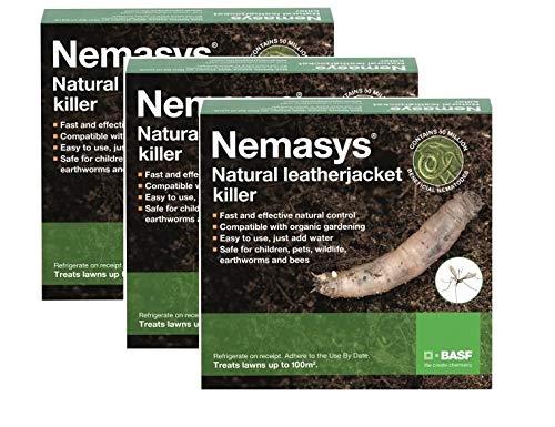 Nemasys Leatherjacket Killer nematode treatment (300 sqm)