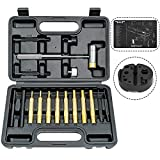 BESTNULE 19 Pcs Roll Pin Punch Set, Gunsmithing Punch Tools, Made of Solid Material Including Bench Block and Gun Cleaning Mat, Ideal for M1911 and Other Pistols with Organizer Storage Container