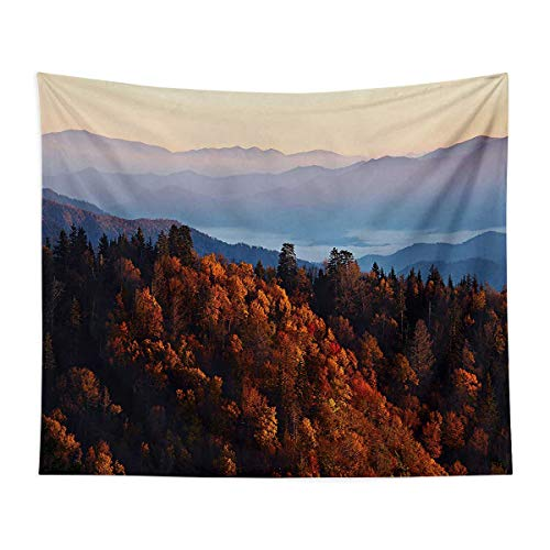 Wall Decoration Blanket - Sunrise at The Mountains Pine Trees Covered on Hill Mist South Carolina - Bedroom, Family Dormitory, Fun Gifts,51x59 Inch