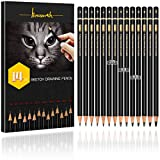 Professional Drawing Sketching Pencil Set - Brusarth 14 Pieces Art Drawing Graphite Pencils 12B, 10B, 8B,...