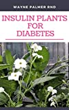 INSULIN PLANTS FOR DIABETES : The Miraculous Guide On How You Can Use Insulin Plants To Cure All Types Of Diabetes