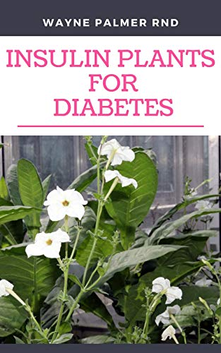 INSULIN PLANTS FOR DIABETES : The Miraculous Guide On How You Can Use Insulin Plants To Cure All Types Of Diabetes (English Edition)