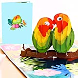Liif Lovebirds Pop Up Card, 3D Greeting Pop Up Cards For All Occasions, Valentines Day, Mother's Day, Happy Birthday, Wedding Card, Anniversary Card, Anniversary Gifts - For Her, Wife, Couple