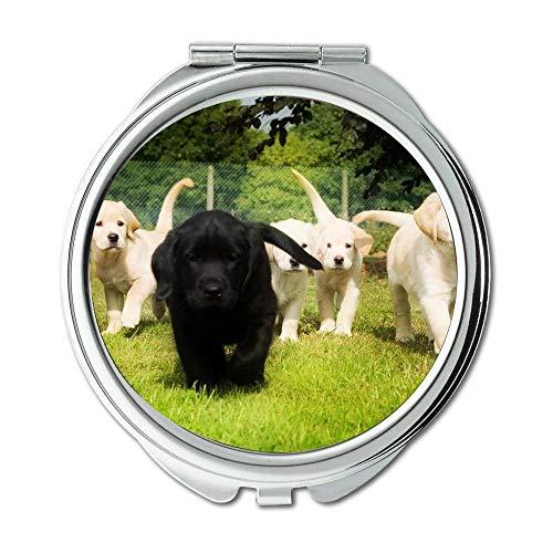 Yanteng Spiegel, Compact Mirror, Hipster Dog Wear Farbe verrückt Hund, Taschenspiegel, 1 X 2X Lupe