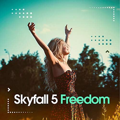 Skyfall 5