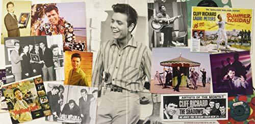 The Best of The Rock 'n' Roll Pioneers [VINYL]