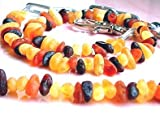 Bernstein Halsband für Hunde und Katzen - mit verstellbarem Gürtel - Länge von 30 cm bis 38 cm - Bernsteinkette-Zeckenhalsband-Zeckenschutz