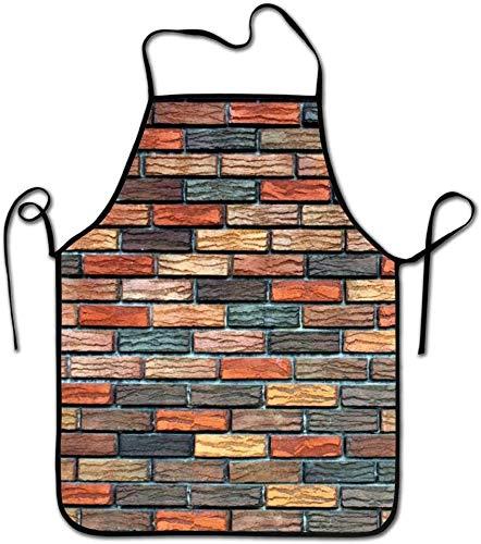 Eileen Powell Geschenke für Männer, Frauen, Papa, Mama | Küchen-mehrfarbige Ziegelstein-Schutzblech-Kochs-Schellfisch für das Kochen des Grillens, BBQ Backend