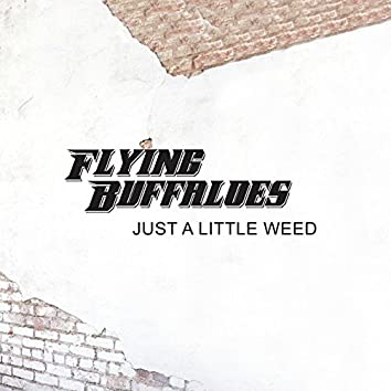 Just a Little Weed - Single