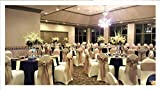 SPRINGROSE Ecoluxe Ivory Spandex Stretch Banquet Chair Covers 10 Set | Sleek, Resilient Polyester & Elastic Spandex | for Wedding, Bridal Showers, Anniversary Party, Receptions, Celebrations, More