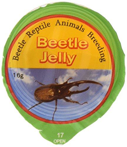 Namiba Terra 0333 HerbivoRep Vitamin-Frucht Jelly Nachfüllpackung, 50-Stück im Beutel