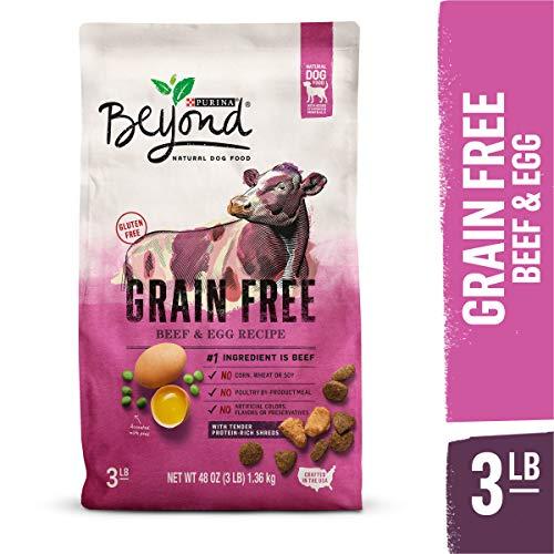 Purina Beyond Grain Free Natural Recipe dog food