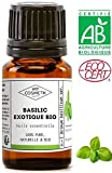Aceite esenciale de Albahaca exótica orgánico - MyCosmetik - 10 ml