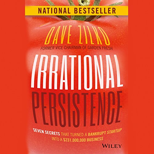 Irrational Persistence audiobook cover art
