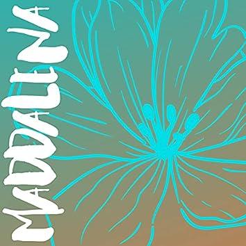 Maddalena Summer Edition