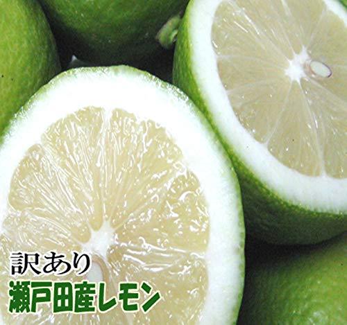 レモン 訳あり 1kg 広島 瀬戸田産レモン 防腐剤不使用 ノ−ワックス