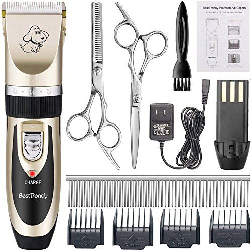 BESTTRENDY Professional Cat Dog Clippers