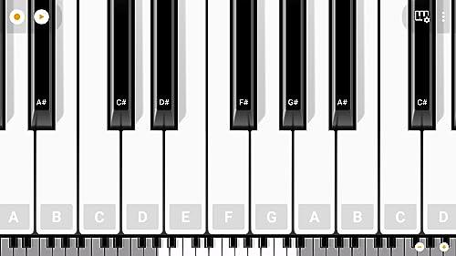 『Mini Piano Pro』の5枚目の画像