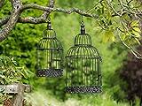 Pares del pájaro de la Jaula Estilo Antiguo de Metal marrón