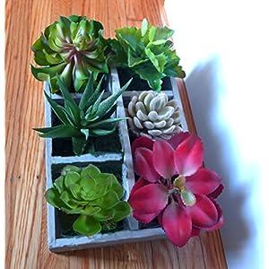 Silk Flower Arrangements CHSGJY 6 Different Mini Artificial Plants Desert Succulent Home Restaurant Landscape Room Balcony Decor