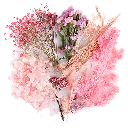 UFLF 12 Tipos de Flores Secas Naturales Variados Flores Preservadas Plantas Decoración para Navidad Vela Resina DIY Manualidad Artesanía Bricolaje