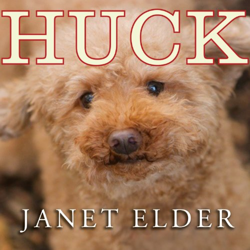Huck audiobook cover art