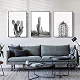 Carteles e impresiones de pintura de lienzo de cactus suculentas minimalistas modernas imágenes artísticas de pared en blanco y negro para la decoración de la sala de estar 50x70cmx3 sin marco