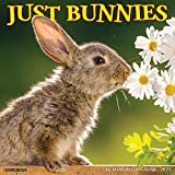 Just Bunnies 2021 Wall Calendar