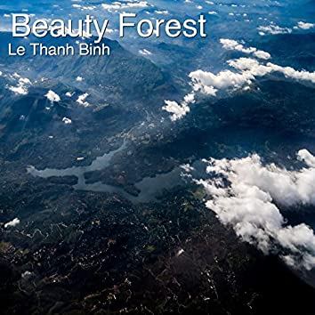 Beauty Forest