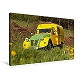 CALVENDO Toile Textile de qualité supérieure 75 cm x 50 cm - Canard - Toile Murale - Tableau sur châssis - Impression sur Toile véritable - Citroën 2CV Technology - Technologie