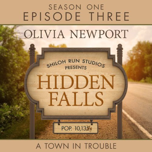 Hidden Falls: A Town in Trouble audiobook cover art