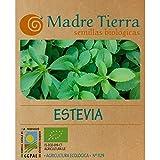 Madre Tierra - Semillas Ecologicas de Stevia -(Stevia Rebaudiana) Origen Vacarisses - Barcelona - Semillas Especiales - 1.5 gramos