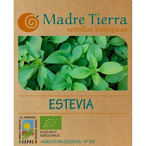 Madre Tierra - Semi di stevia biologica - (Stevia Rebaudiana) Origin Vacarisses - Barcellona - Semi speciali - 1,5 grammi