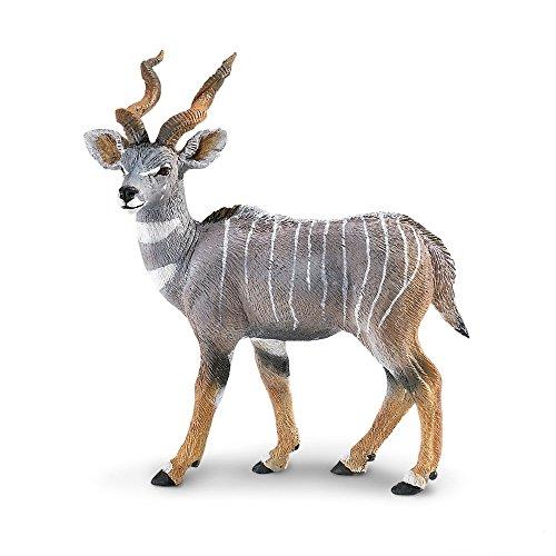 Safari 296229 WS Lesser Kudu