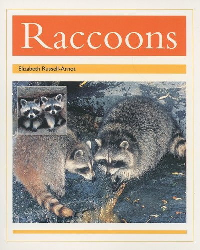 Rigby PM Collection: Individual Student Edition Gold (Levels 21-22) Racoons (PM Animal Facts: Nocturnal Animals)