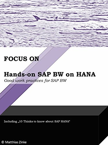 Hands-on SAP BW on HANA: Good work practices for SAP BW (Focus On Book 2) (English Edition)