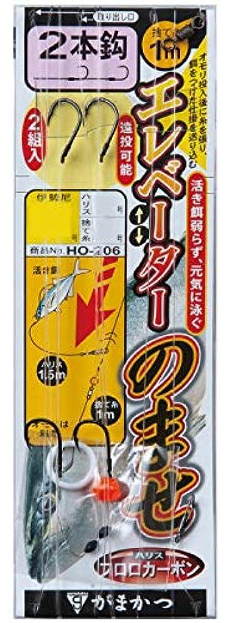 もつれ腐敗したウォーターフロントがまかつ(Gamakatsu) エレベーターのませ仕掛(2本鈎) HO-206 13-10