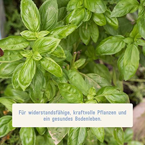 Plantura Bio Universaldünge - 2