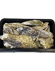 【和香】水質安定 除菌済クリーン牡蠣殻(かきがら)