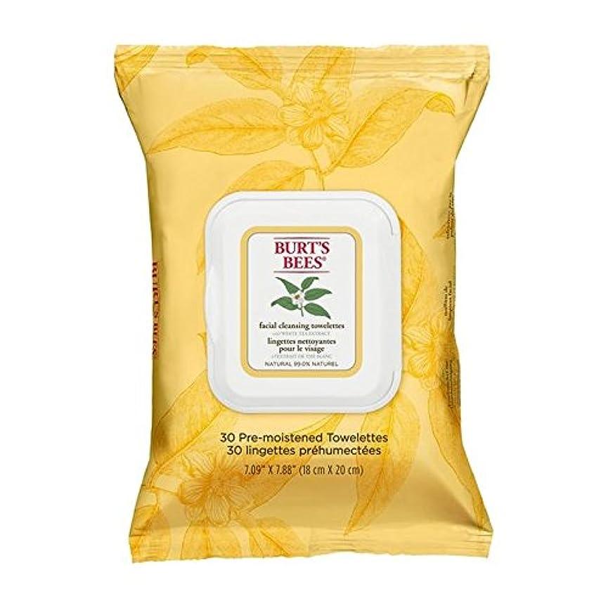 誘発するスカウトハードウェアホワイトティーエキスとバーツビー洗顔ペーパータオル x2 - Burt's Bees Facial Cleansing Towelettes with White Tea Extract (Pack of 2) [並行輸入品]