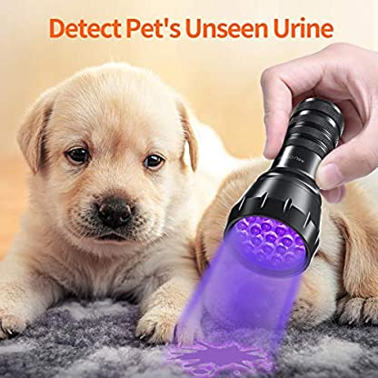 MIU COLOR Black Light UV Flashlight, 21 LEDs 395nm UV Blacklight, Dogs Urine Detector, Handheld UV Flashlight for Dry Stains and Scorpion Hunting 5