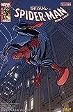 Spider-man 2012 hs 07