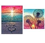 5D DIY Pintura Diamante,2 PCS Kits de Bricolaje de Pintura de Diamante 5D kit de Bordado de Arte de Diamante Arte de Punto de Cruz de Diamante,Playa y Diente de León