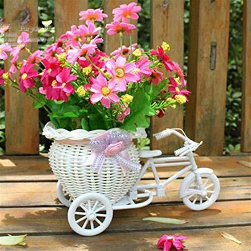 ZYTB Blumentopf neues Fahrrad Dekorative Blumenkorb Datum Plastik Weiß Dreirad Fahrrad-Entwurfs-Blumen-Korb-Aufbewahrungs Partei-Dekoration Töpfe (Color : White)
